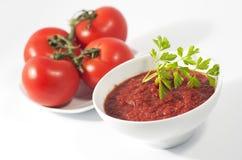 Ciotola e zolla della salsa di pomodori con i pomodori rossi Fotografia Stock Libera da Diritti