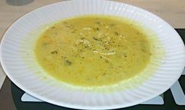 Ciotola enorme di minestra di pollo con le tagliatelle Fotografia Stock Libera da Diritti
