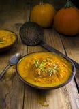 Ciotola fresca di minestra della zucca Fotografie Stock