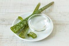 Ciotola piccola con il gel e la pianta di vera dell'aloe Fotografia Stock Libera da Diritti