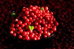 Ciotola piena di uva di monte immagini stock libere da diritti