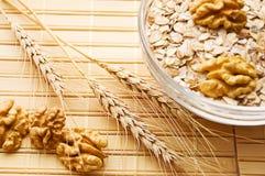 Ciotola in pieno di farina d'avena Immagini Stock Libere da Diritti