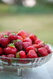 Ciotola riempita di fragole rosse fresche Immagine Stock