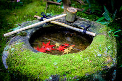 Ciotola rossa del calcolo dell'interno del lavandino delle foglie Immagine Stock