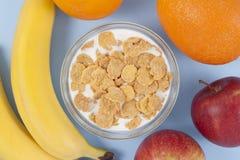Ciotola sana della prima colazione di cibo di muesli bassi di calorie con i frutti Immagine Stock Libera da Diritti