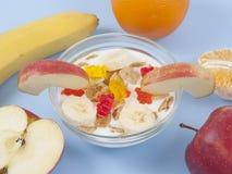 Ciotola sana della prima colazione di cibo di muesli bassi di calorie con i frutti Immagini Stock Libere da Diritti