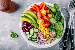 Ciotola sana di Buddha del pranzo del vegano Avocado, quinoa, pomodoro, cetriolo, fagioli rossi, spinaci, cipolla rossa ed insala immagine stock