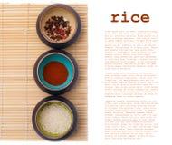 Ciotole ceramiche con le spezie ed il riso Immagini Stock