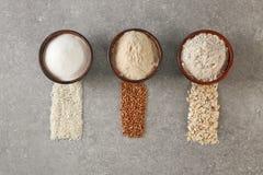 Ciotole con differenti tipi di farine Fotografie Stock