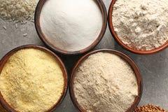 Ciotole con differenti tipi di farine Fotografia Stock Libera da Diritti