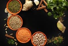 Ciotole con i legumi e le spezie indiane, fresco e secco sulla b nera Fotografia Stock Libera da Diritti