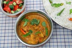 Ciotole del servizio del curry del pollo da sopra fotografia stock