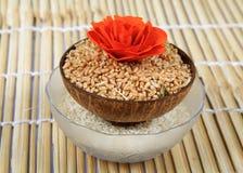 Ciotole di riso e del frumento Immagini Stock