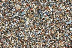 Ciottoli bagnati della spiaggia Fotografia Stock