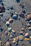 Ciottoli bagnati sulla spiaggia Fotografie Stock