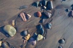 Ciottoli bagnati sulla spiaggia Fotografia Stock