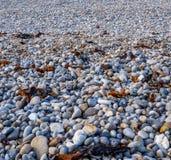 Ciottoli della spiaggia Immagini Stock Libere da Diritti