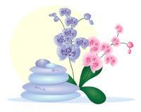 Ciottoli della stazione termale con le orchidee Royalty Illustrazione gratis