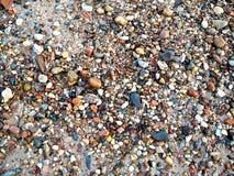Ciottoli e piccole pietre sulla riva del Mar Baltico Fotografie Stock Libere da Diritti