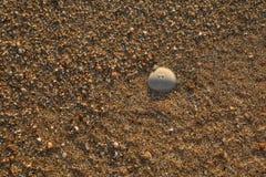 Ciottoli misti con la sabbia di bella spiaggia di Skala, isola di Kefalonia, mare ionico, Grecia fotografia stock libera da diritti