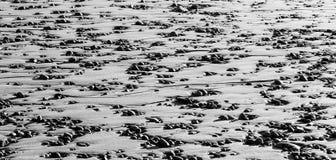 Ciottoli nella sabbia Fotografie Stock