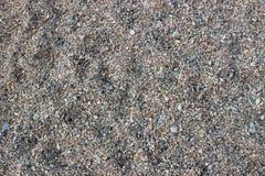 Ciottoli su una spiaggia Fotografia Stock Libera da Diritti