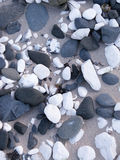 Ciottoli su una spiaggia Fotografia Stock