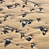 Ciottoli sulla sabbia Immagine Stock