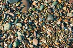 Ciottolo del mare Fotografia Stock