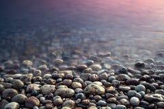 Ciottolo del mare. Composizione della natura del tramonto. immagine stock libera da diritti