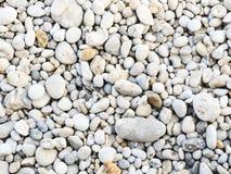 Ciottolo di pietra sulla spiaggia di Etretat Immagini Stock Libere da Diritti