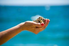 Ciottolo disponibile delle pietre alla spiaggia Fotografia Stock