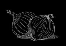 Cipolla bianca su priorità bassa nera fotografie stock libere da diritti
