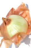 Cipolla della sbucciatura Fotografie Stock