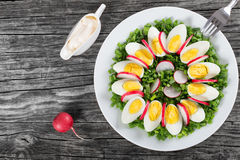 Cipolla di inverno, uova, insalata del ravanello, vista superiore Immagine Stock