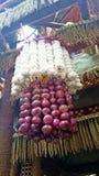 Cipolla ed aglio d'attaccatura del candeliere Fotografia Stock Libera da Diritti