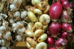 Cipolla ed aglio organici Fotografia Stock Libera da Diritti