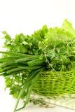 Cipolla fresca dell'aneto del prezzemolo dell'erba verde Immagine Stock