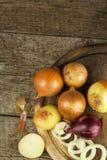Cipolla fresca su una vecchia tavola di legno donna di vettore della preparazione della cucina dell'illustrazione dell'alimento A Immagine Stock Libera da Diritti
