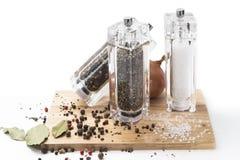 Cipolla, mulino di vetro con pepe, sale e spezie sopra Fotografie Stock