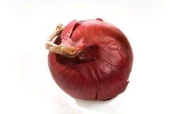 Cipolla rossa Fotografia Stock Libera da Diritti
