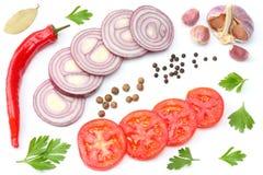 cipolla rossa affettata, peperoncino rovente, pomodoro, aglio e spezie isolati su fondo bianco Vista superiore Fotografia Stock Libera da Diritti