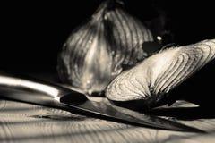 Cipolla rossa affettata su legno con un coltello fotografia stock libera da diritti