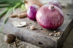 Cipolla rossa su di legno Fotografia Stock