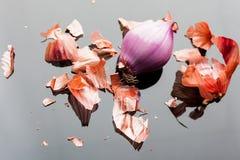 Cipolla sbucciata dello scalogno da sopra Fotografie Stock