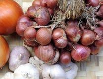 Cipolla, scalogni ed aglio Fotografia Stock Libera da Diritti