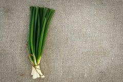 Cipolla verde sul licenziamento Fotografia Stock
