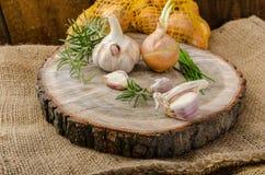Cipolle, aglio ed erbe bio- dal giardino fotografie stock libere da diritti