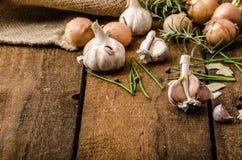 Cipolle, aglio ed erbe bio- dal giardino immagine stock libera da diritti