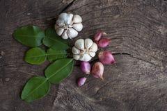 Cipolle, aglio, foglie della calce del kaffir Immagine Stock